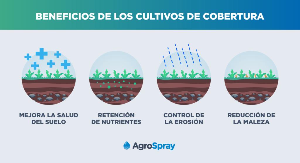 Ventajas de usar cultivos de cobertura